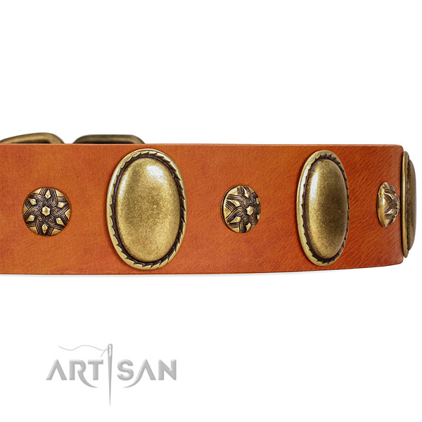 Decorated Tan Leather Dog Collar with Strong Riveted Fittings
