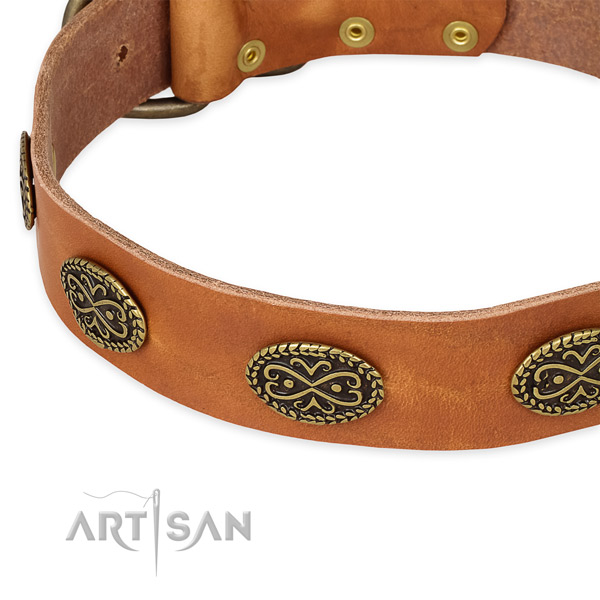 Tan leather dog collar for appearing on public