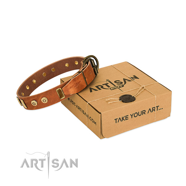 Top quality tan leather dog collar with elegant decorations