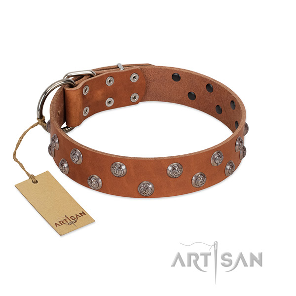 High-quality leather dog collar with 2 rows of studs