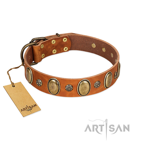 Posh Design Tan Leather Dog Collar with Plates and Studs