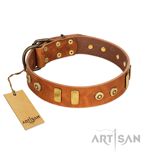 decorated tan dog collar made of polished waxed leather