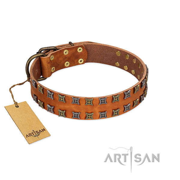 Designer Artisan leather dog collar made of quality