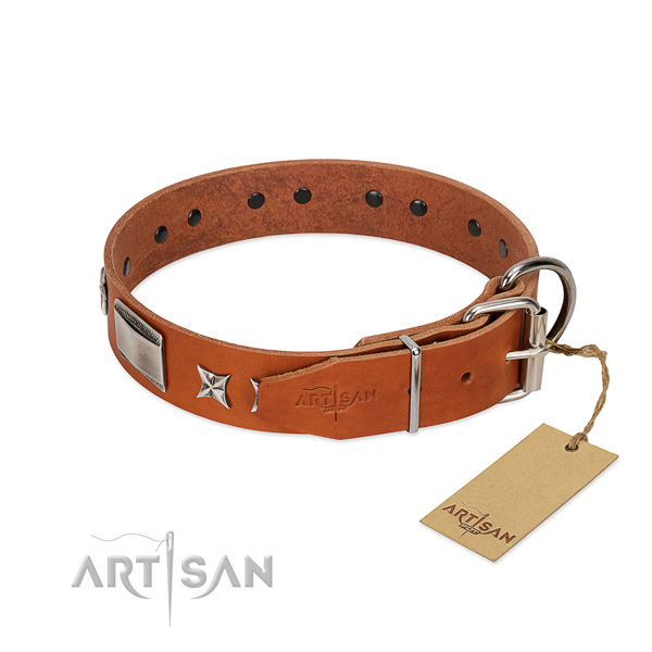 Easy adjustable leather dog collar of safe materials