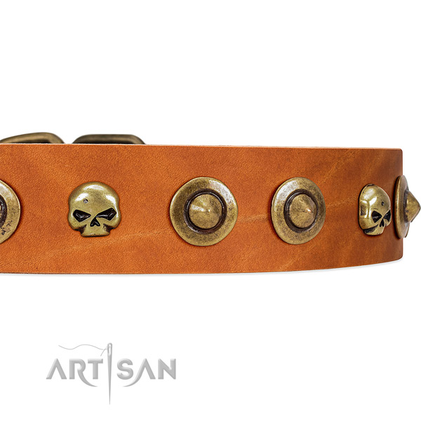 FDT Artisan tan leather dog collar with decorative brooches and skulls