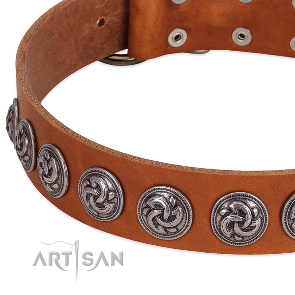 Tan Leather Dog Collar Exclusively Adorned with Silvery Brooches