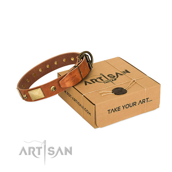 Eye-catching Tan Dog Collar Delivers Pleasure and Comfort