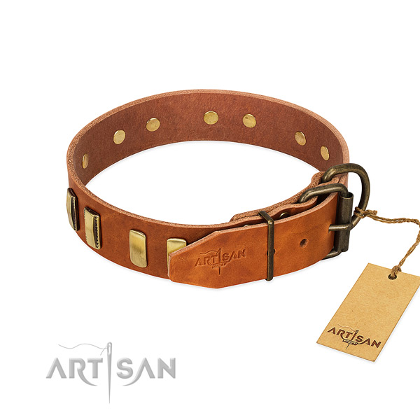 Exclusive tan leather dog collar for daily use