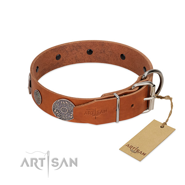 Handmade tan leather dog collar with sturdy fittings