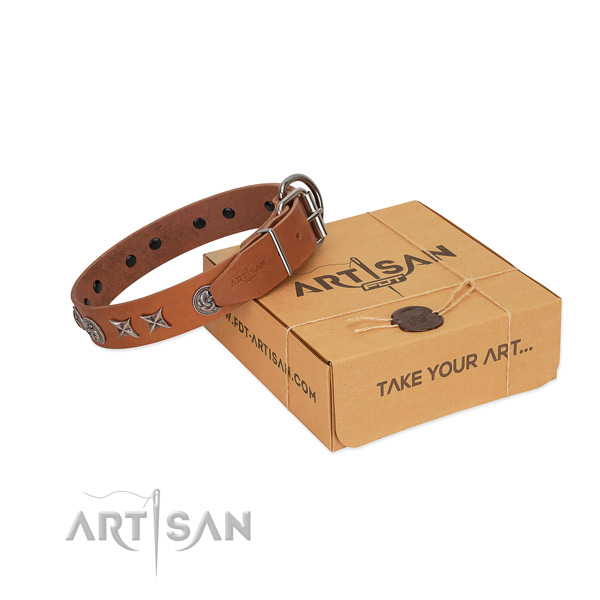 Tan FDT Artisan leather dog collar for walks