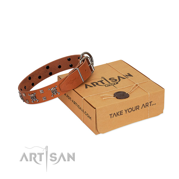 FDT Artisan tan leather dog collar will amuse and attract