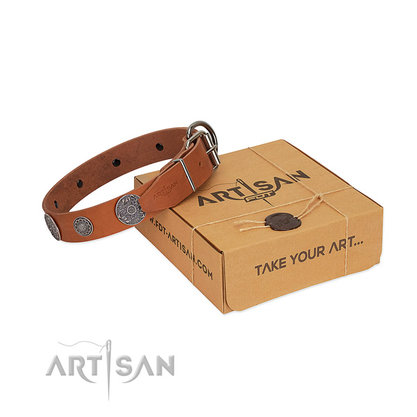 Royal quality tan genuine leather dog collar for daily