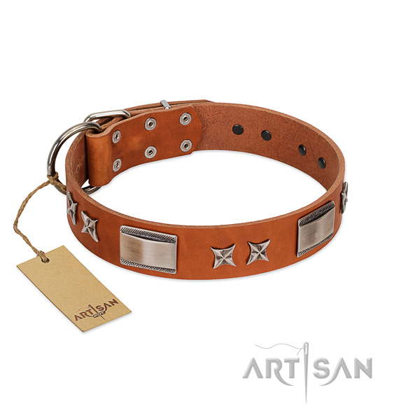 Comfortable tan leather dog collar for walking