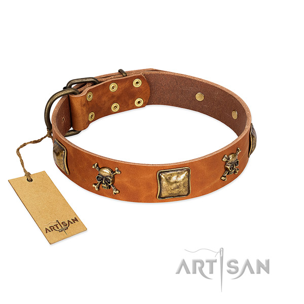 Comfortable leather Artisan dog collar completely