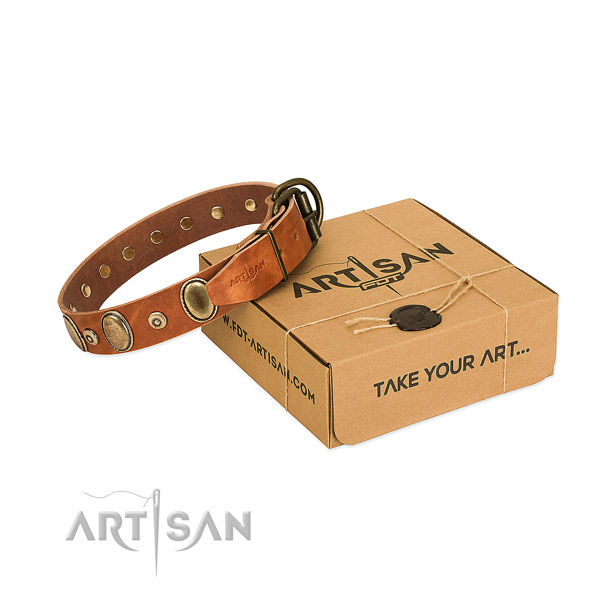 Deluxe Leather Dog Collar Made of First-rate Materials