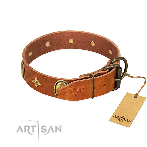 Perfect fit leather dog collar for everyday activities