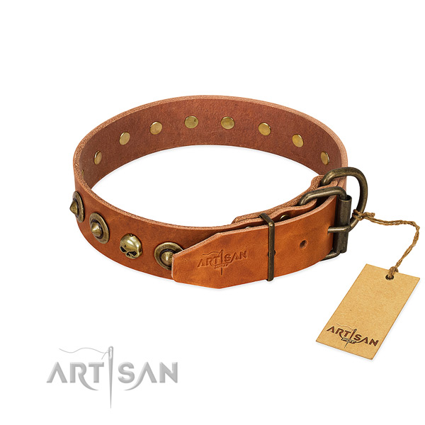 Sturdy Artisan dog collar with polished edges