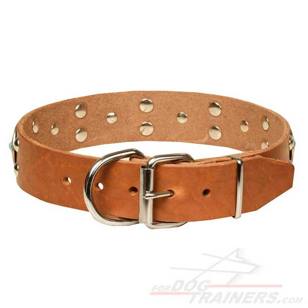 Nickel-plated buckle and D-ring on Tan Leather Dog Collar