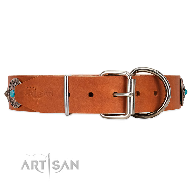 Tan Leather dog collar with silver-like hardware with