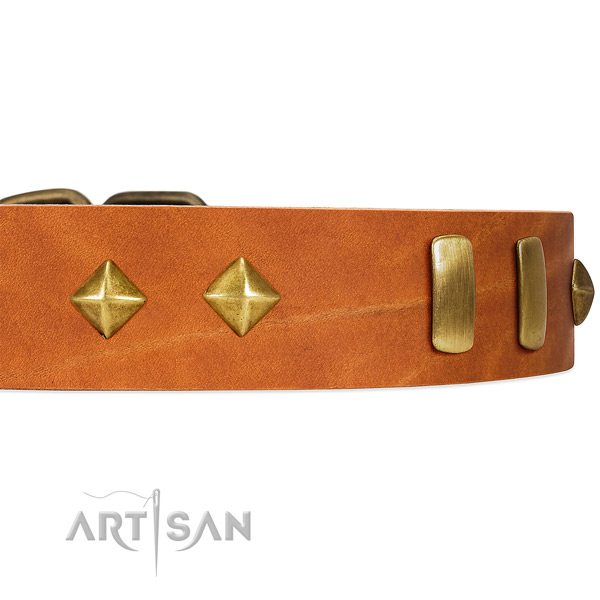 Old Bronze-like Plated Engraved Adornments on Tan Leather Dog Collar