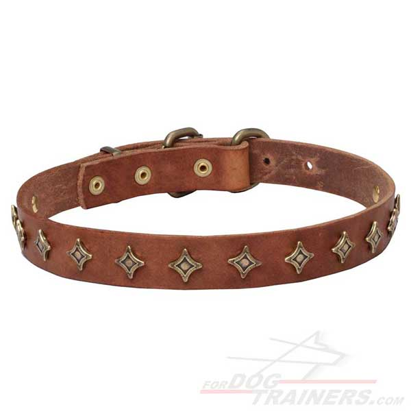 Rust-resistant fittings for tan leather dog collar