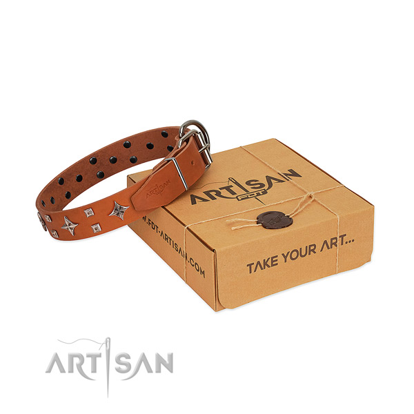 Fascinating tan leather dog collar for pleasant daily wear