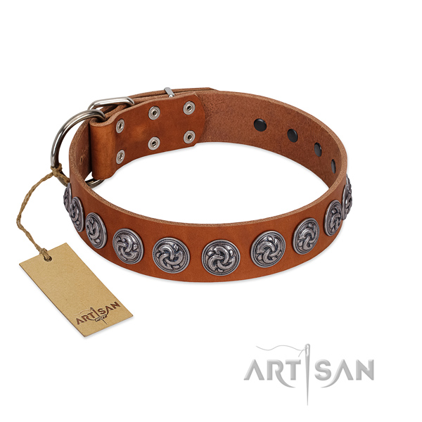 Premium Quality Tan Leather Collar with Unique Decorations