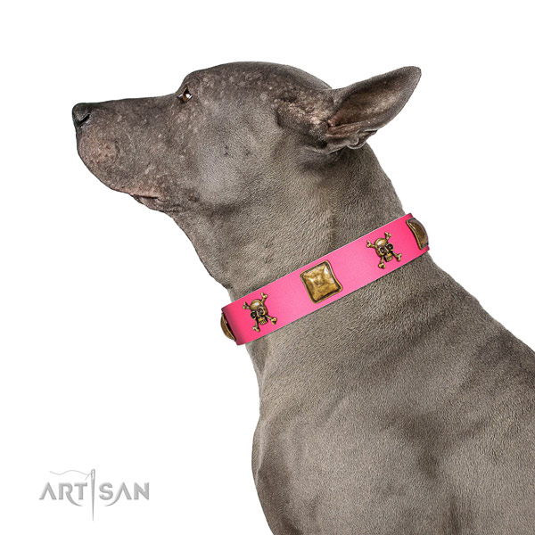 Totally safe Thai Ridgeback Artisan pink leather collar