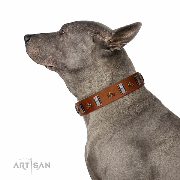 Walking top-notch quality walking leather Thai Ridgeback