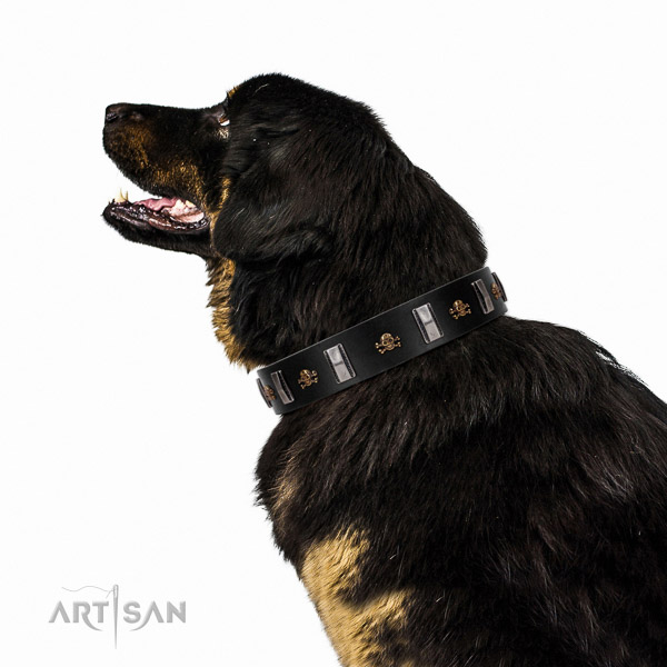 Extraordinary walking black leather Tibetian Mastiff