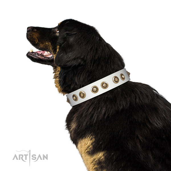 Decorated White Leather Tibetian Mastiff Collar with Durable Old-bronze Plated Hardware
