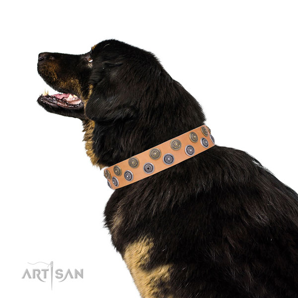Tibetian Mastiff unusual natural genuine leather dog collar with adornments
