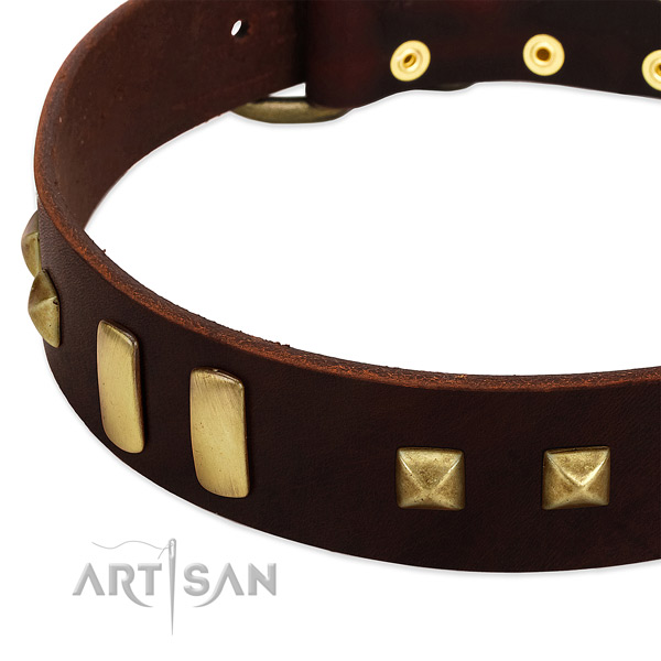 Brown Dog Collar with Old-bronze Plated Decorations