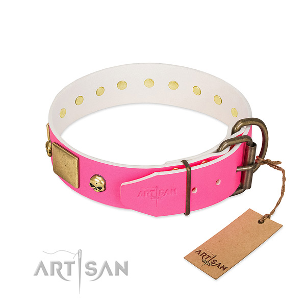 Prime Quality Dog Collar with Rust-resistant Hardware