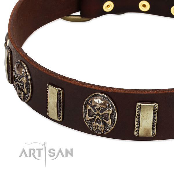 Walking Leather Dog Collar with Plates and Medallions