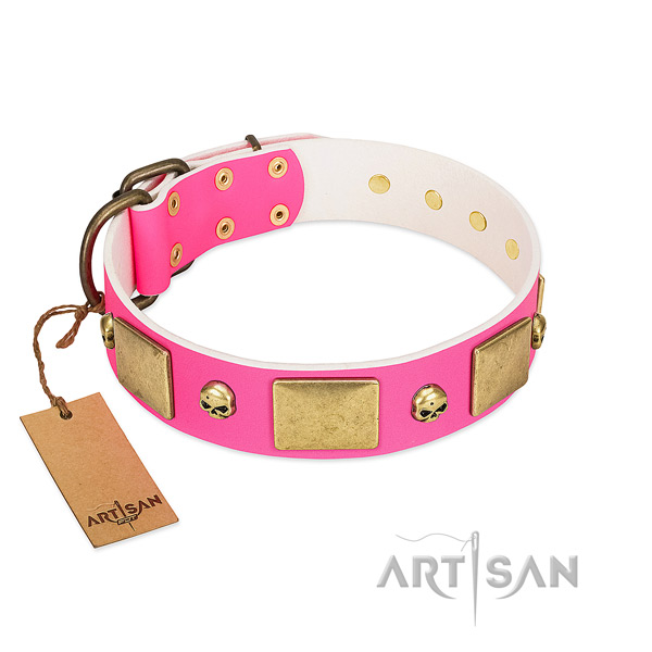 Glamorous Walking Leather Dog Collar with Luxurious Plates and Skulls