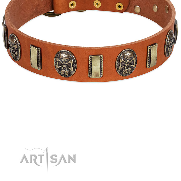 Tan Leather Dog Collar with Extraordinary Embellishment