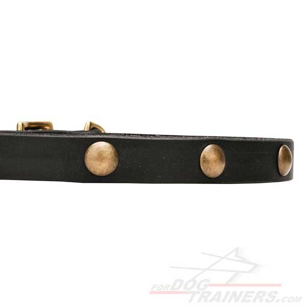 Dog collar made of strong genuine leather