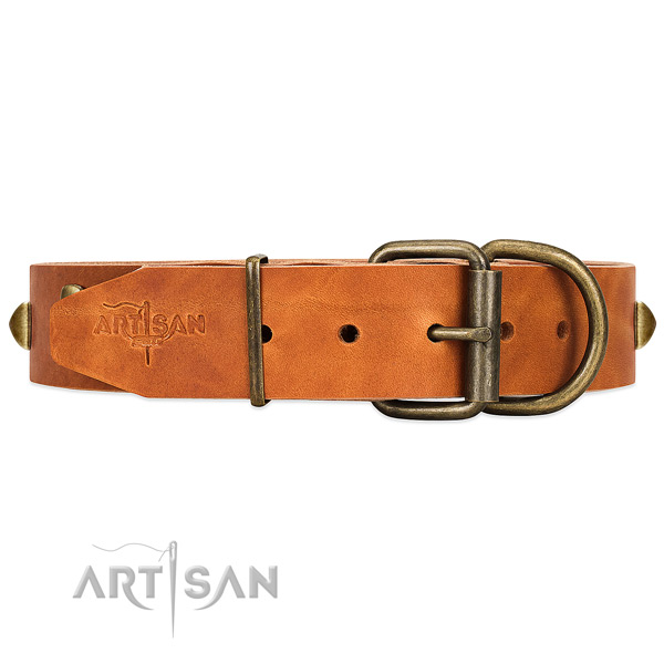 Reinforced leather dog collar with riveted hardware
