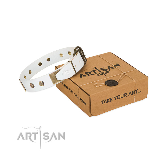 Elegant Dog Collar with Exquisite Combo of Large Plates and Small Studs