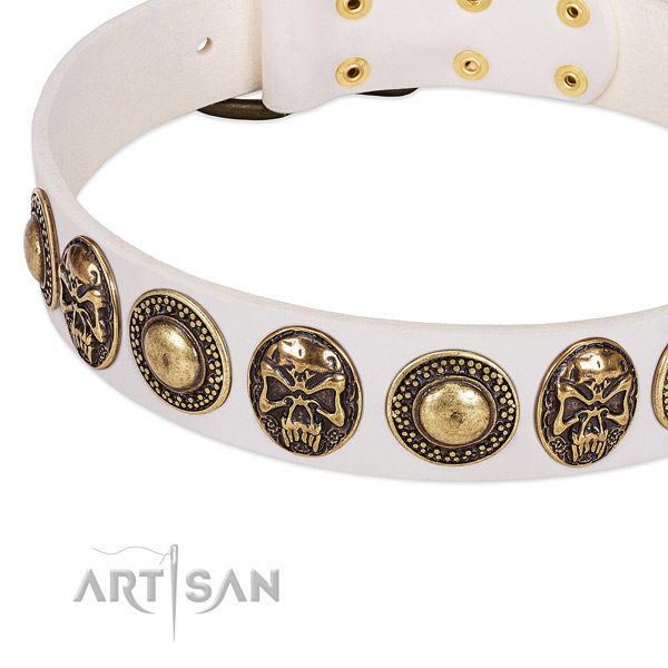White Leather Dog Collar with Conchos and Medallions for Everyday Walking
