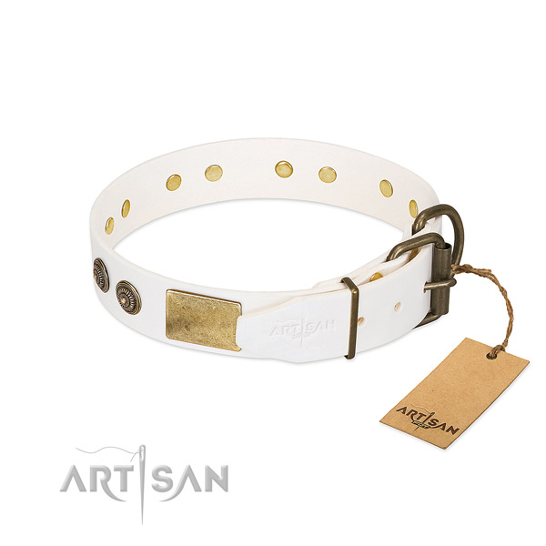 Smoothed Leather Dog Collar with Riveted Strong Hardware