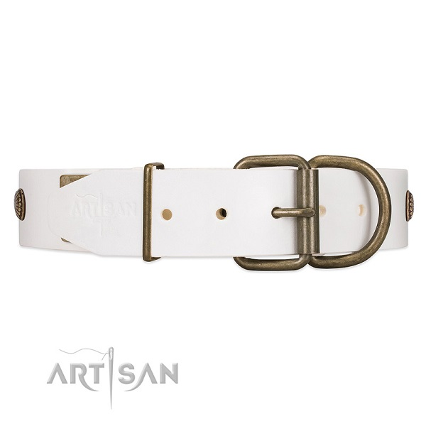 Dog Collar with Reinforced Buckle and D-ring