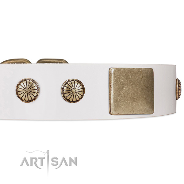 Dog Collar with Old-bronze Plated Plates and Circular Flowers Studs