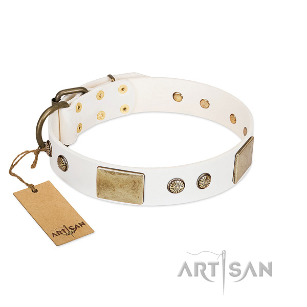 Handmade Leather Dog Collar with Plates and Studs