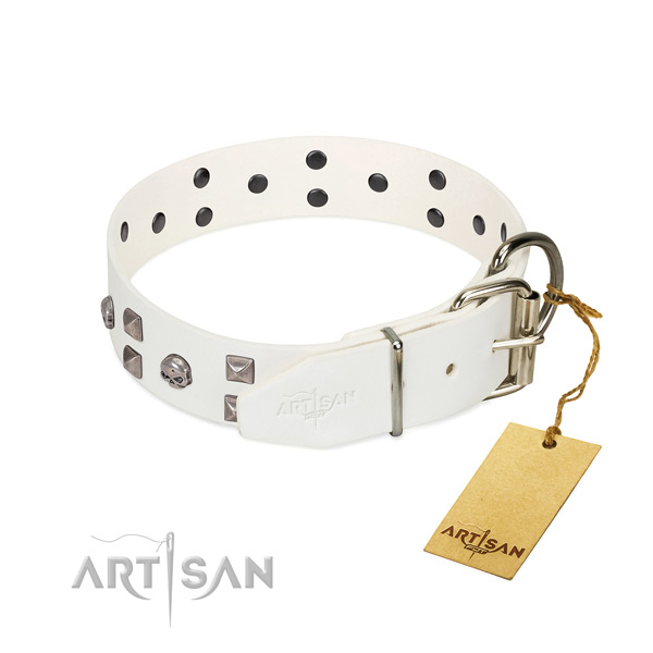 White leather dog collar with polished edges