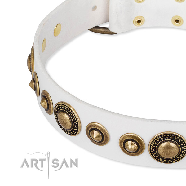 White leather dog collar with secured studs
