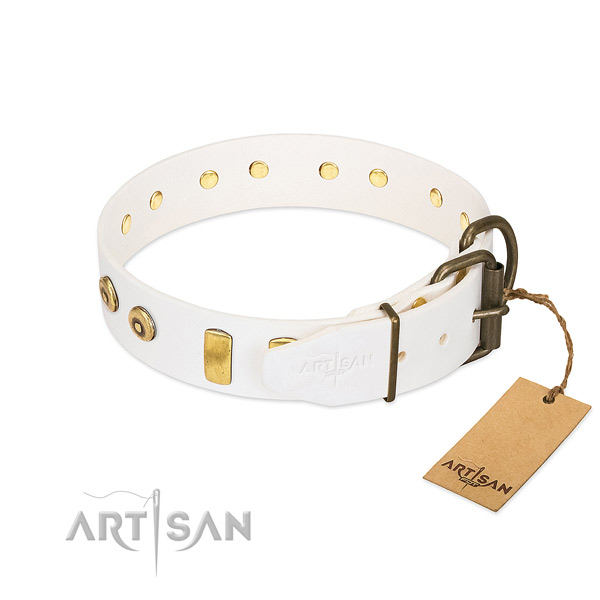 FDT Artisan Design Dog Collar Equipped with Heavy-duty Hardware