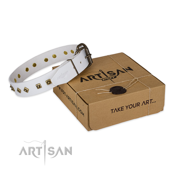 Safe in wearing white leather dog collar