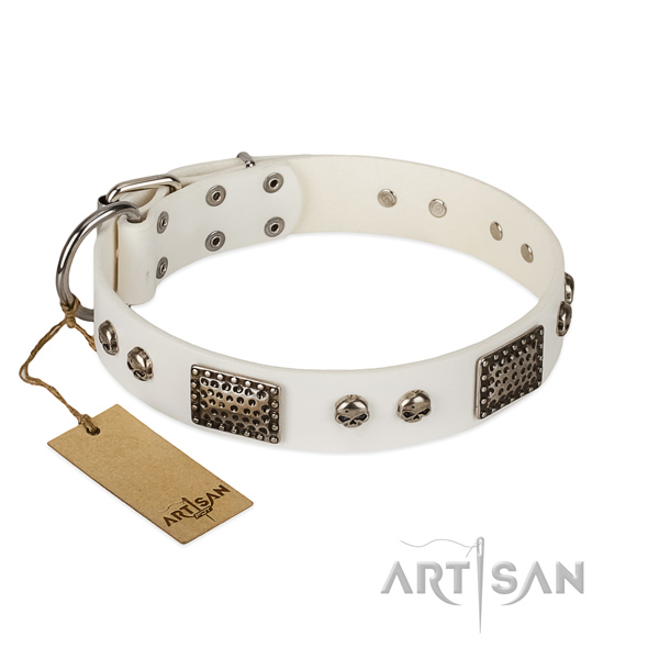 White leather dog collar for daily usage